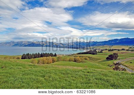 Kaikoura, North Island, New Zealand