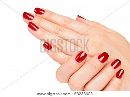 Beautiful Female Hands red manicure shellac concept on a white background