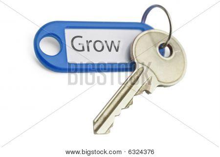 Key To Grow