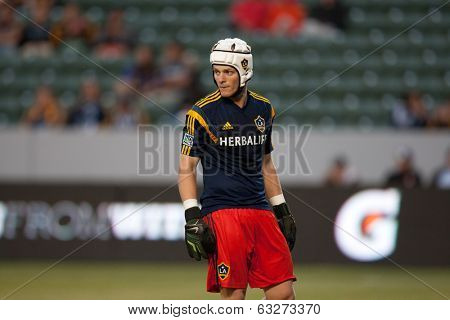 CARSON, CA - APRIL 12: Los Angeles Galaxy GK Brian Perk #1 during the MLS game between the Los Angeles Galaxy & the Vancouver Whitecaps on April 12th 2014 at the StubHub Center.