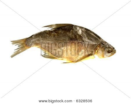 One Dried Fish