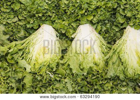 green leaf lettuce in a market