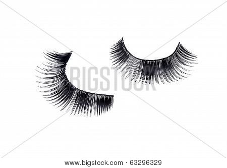 pair of fake false eyelash isolated on white poster