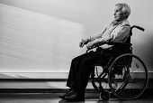 Thoughtful senior man in wheelchair in nursing home  poster