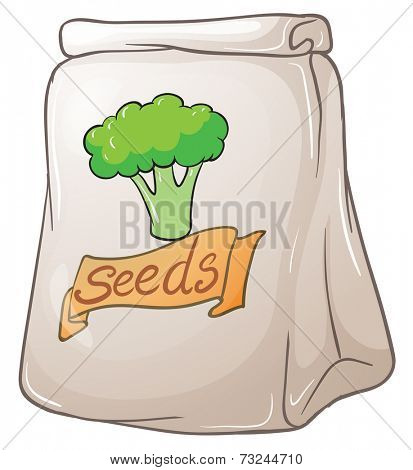 Illustration of a pack of broccoli seeds on a white background