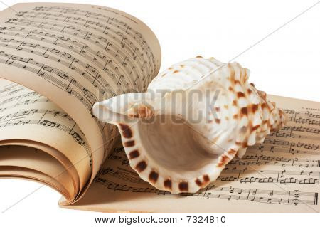 Sea Shell And Music Book