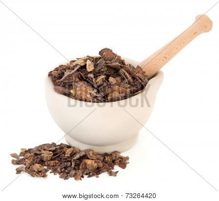 Szechuan lovage root chinese herbal medicine in a stone mortar with pestle over white background. Chuan xiong.