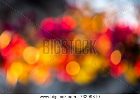 Abstract Light Of The Tree Flowers