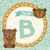 ABC animals B is bear. Childrens english alphabet. Vector illustration poster