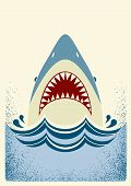 Shark jaws.Vector color background illustration for text poster