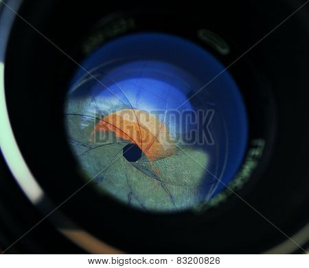 Camera lens on light background