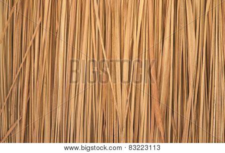 Dry Grass, Imperata Cylindrica Beauv