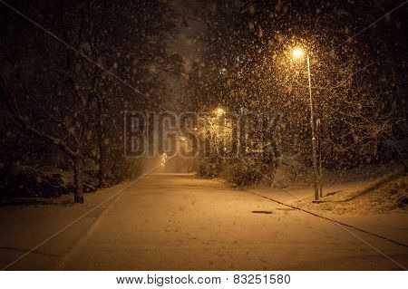 a lot of snowfall and empty walkway at night in suburb area poster