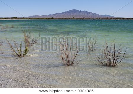 Crystal Reservoir, Ash Meadows National Wildlife Refuge