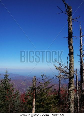 Blue Sky In The Mountains