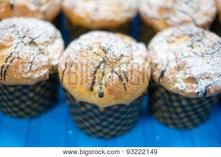 Muffins With Powder Sugar & Chocolate