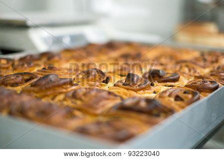 Tray Of Freshly Baked Cinnamon Rolls