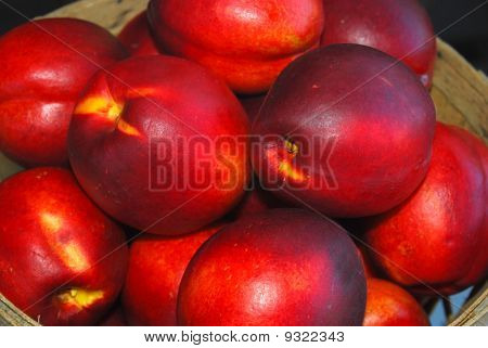 Nectarines by the Bushel