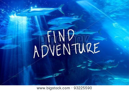 find adventure against fish swimming with shark in darkest water