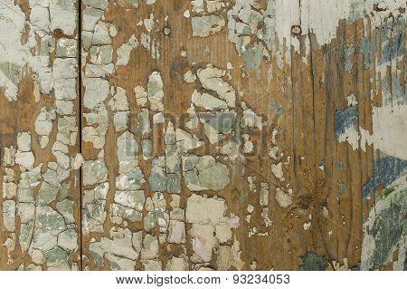 Wooden Bark Background