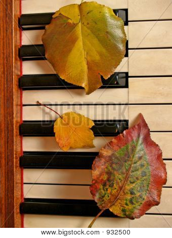 three colorful autumn leaves tickle the ivories; music for the seasons poster