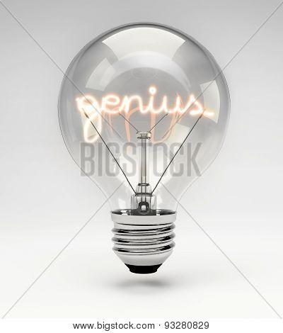 Conceptual Light Bulb (set) - Genius