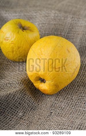 Two Overripped Golden Apples On Jute Cloth