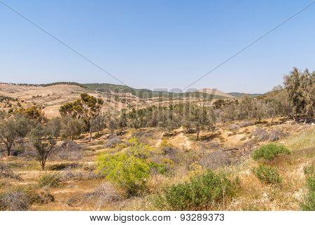 Metar, A Community Village Northen Ber-sheva