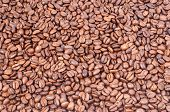 close-up shot of coffee beans as background poster