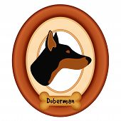 Doberman Pinscher dog portrait profile in cherry wood mat frame, dog bone treat tag, isolated on white background. poster