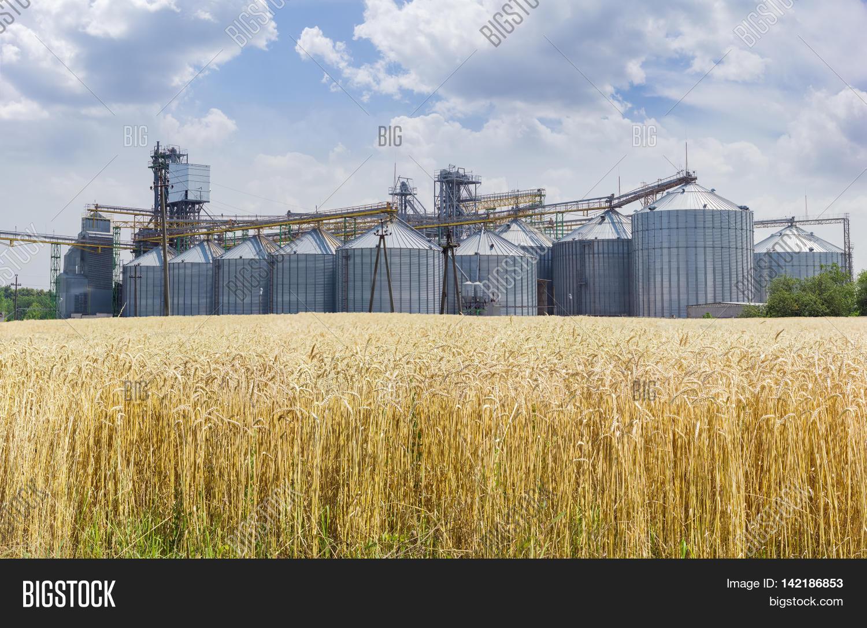 Grain Storage System Image & Photo (Free Trial) | Bigstock