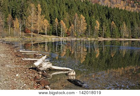 Autumn at the lake shore with reflection of trees in water