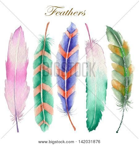 A set of the isolated colored feathers painted in a watercolor on a white background