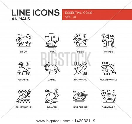 Animals - set of modern vector plain line design icons and pictograms of animals. Bison, yak, deer, moose, giraffe, camel, narwhal, killer whale, blue whale, beaver porcupine capybara