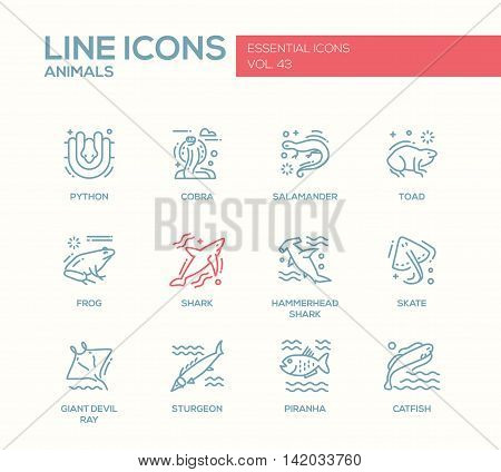 Animals - set of modern vector plain line design icons and pictograms of reptiles and fish. Python, cobra, salamander, toad, frog, shark, hammerhead shark, skate, giant devil ray, sturgeon, piranha, catfish