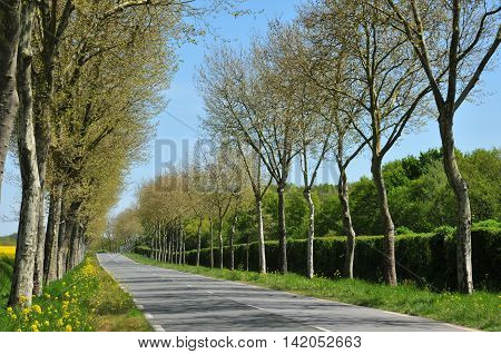 Gazeran France - june 5 2016 : the countryside in spring