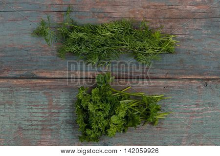 Green fresh dill and parsley on a wooden table stock picture