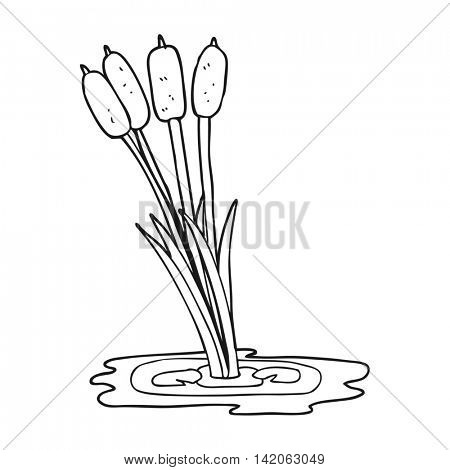 freehand drawn black and white cartoon reeds