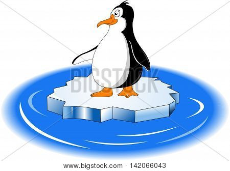 little black penguin with orange beak on a white background