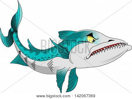 high quality barracuda cartoon character include flat design