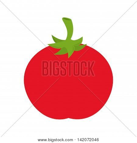 tomato vegetable ingredient food recipe nature organic salad vector graphic isolated and flat illustration