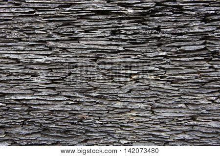 Texture sedimentary rock , Sedimentary rock stone background