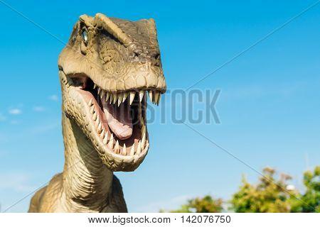 NOVI SAD SERBIA - AUGUST 7 2016: Velociraptor life size model of prehistoric animal in theme entertainment Dino Park. Raptor lived approximately 75 to 71 million years ago.