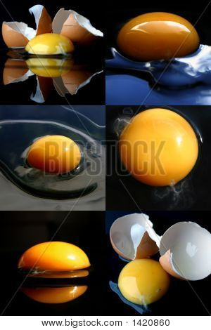 Broken Eggs Collage