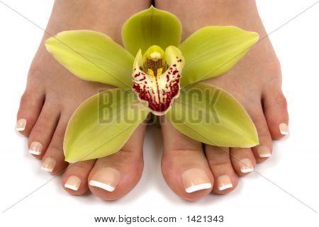Pés e orquídea