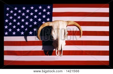 Photo of the U.S. flag with a cow skull in front. poster