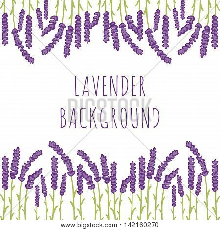 Vector floral background of colored lavender design elements. Spring or summer lavender hand drawn illustrations.