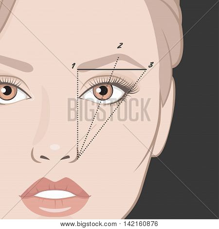 Vector illustration of woman face and eyebrow mapping. How to shape your brows at home. Makeup tips. Perfect eyebrow shape for your face.