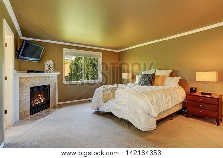 Gray Bedroom Interior With Fireplace And Tv Set