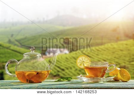Cup of hot tea and tea-pot served on wooden table, plantation on background